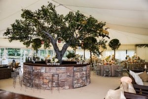 Tree in wedding marquee