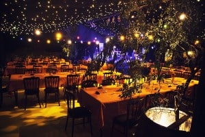 Navy blue and gold marquee party decor Surrey