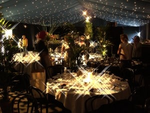 Star cloth ceiling party marquee Surrey