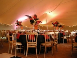 Stretch tent marquee party decor