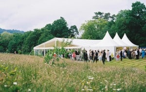 Sophisticated marquee lighting and decor Surrey