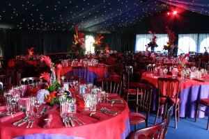 opulent marquee theme