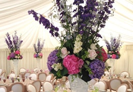 Bloomster Marquee Florists
