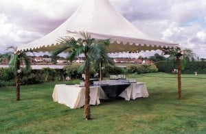 Chinese Hat Marquee - Pagoda Marquees