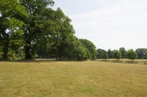 Merrist Wood Park Field